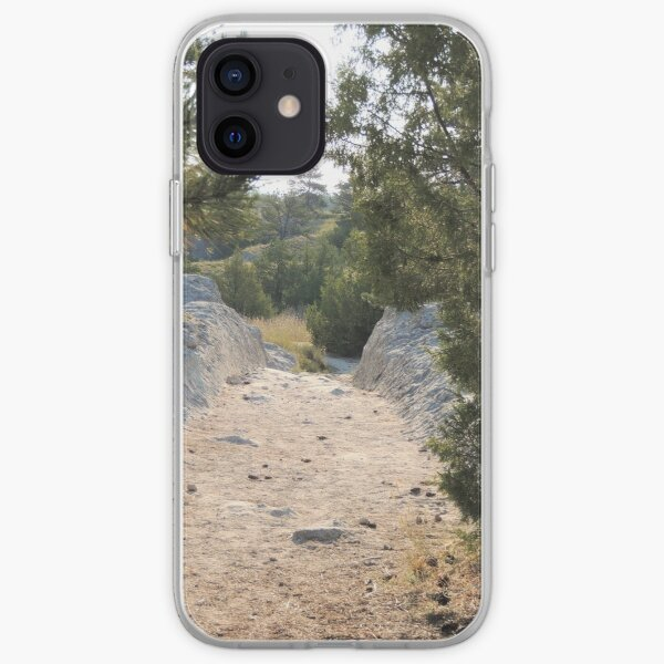 Time Travel iPhone Soft Case