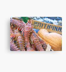 Spiny Lobsters Metal Print