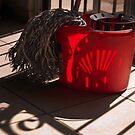 Playful Bucket   by Richard G Witham