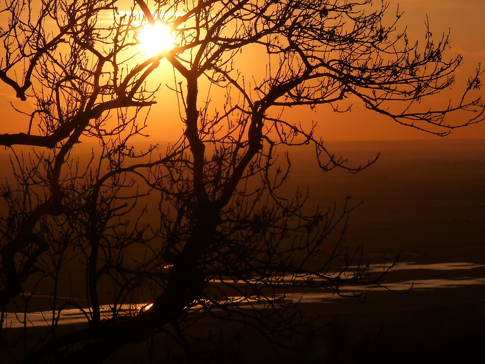 Romney Marsh Sunset by Patrick Noble