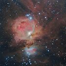 M42 Region - Great Nebula in Orion by Jeff Johnson