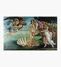 Lámina fotográfica El nacimiento de Venus por Sandro Botticelli (1486)