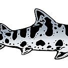 Leopard Shark by christinemay