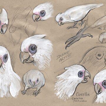 Corellas by SnakeArtist