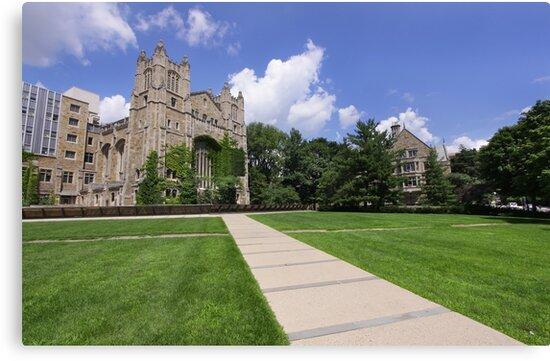 University Of Michigan by snehit