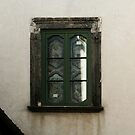 Medieval Green Widow by Anna Lemos