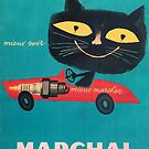 Vintage Cat Driving Car Poster by mindydidit