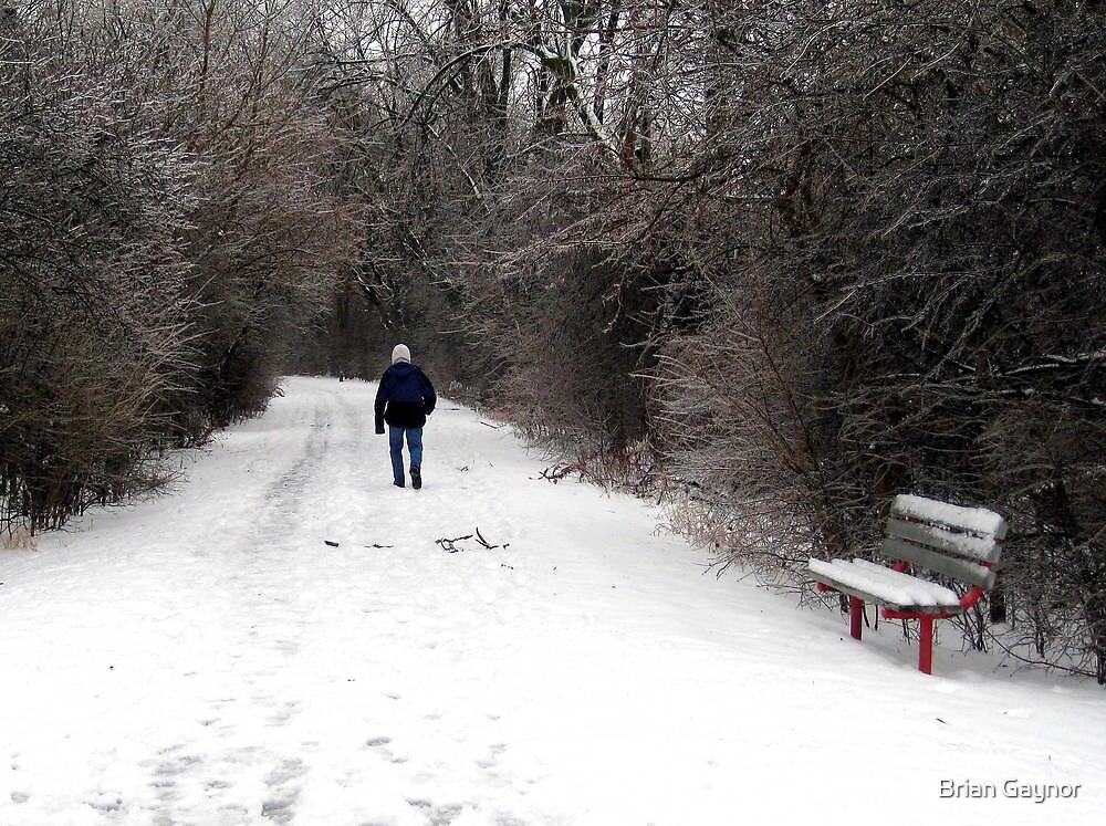 Solitary Winter Walk by Brian Gaynor