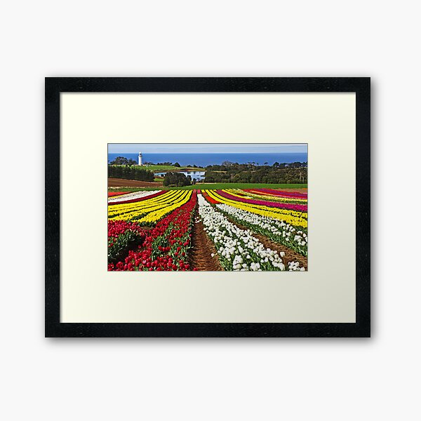 Down to the Sea Framed Art Print