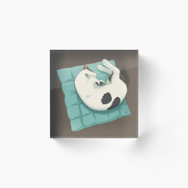 Sleeping Cat Spot Grey Tabby Acrylic Block