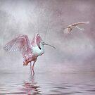 Pink Mist by Brian Tarr