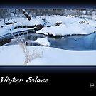 Winter Solace by Karen Goad