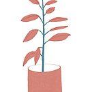 Ficus elastica by Caroline Wilkie Studio
