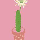 Potted Cactus by Caroline Wilkie Studio