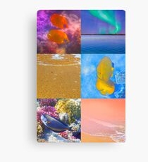 Sealife And Seashore Collage HDR Vertical 3 Canvas Print