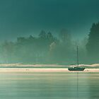 Morning Mist by metriognome