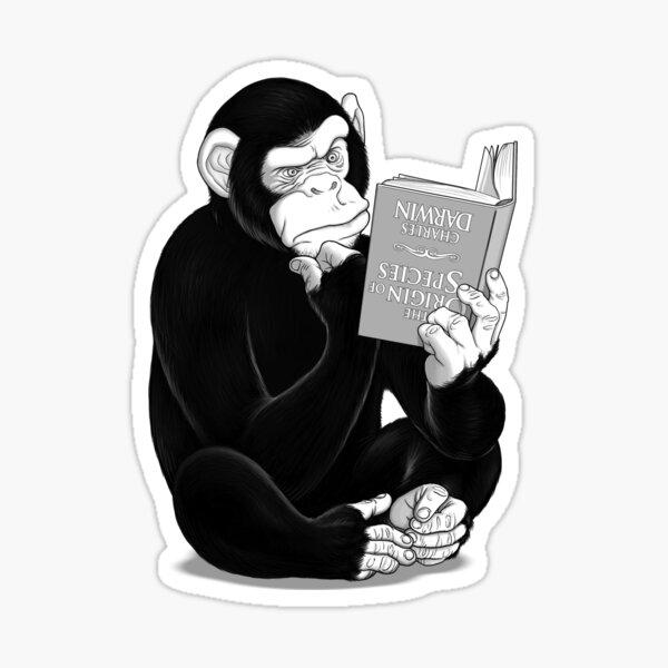 Origin of Species Sticker