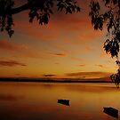 Burnt Gum Boat Sunset by Martice
