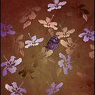 batik butterfly by Ann Nightingale
