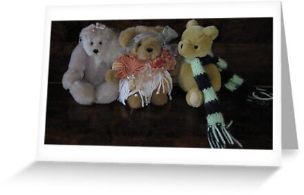 Three Little Teddies. by Mywildscapepics
