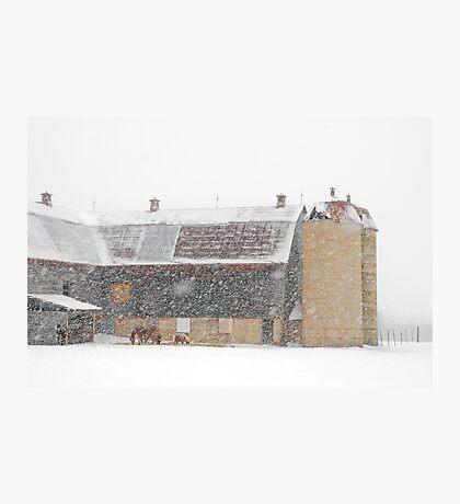 Winter Farm Scene Photographic Print