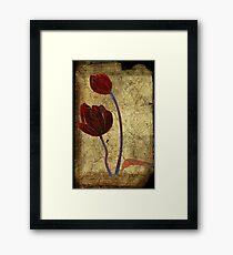2 tulips Framed Print
