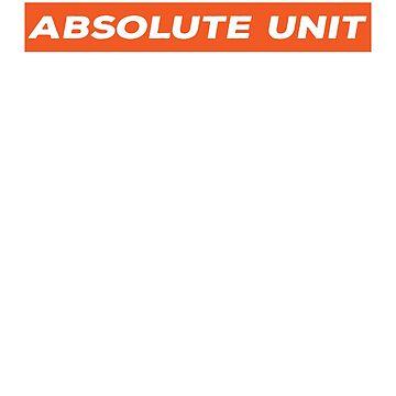 Aboslute Unit - Orange by BrobocopPrime
