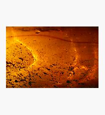 Solar Pond Photographic Print