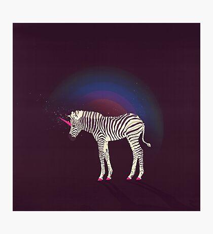 Magic Unicorn Zebra Photographic Print