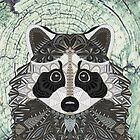 Ornate Raccoon by artlovepassion