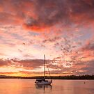 Sailing Into The Sunset by Ann  Van Breemen