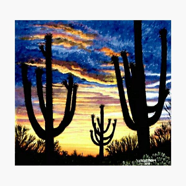 Saguaro Sunset  Photographic Print