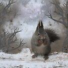 Squirrel - fantasy by Bente Agerup