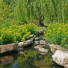 Garden Pond by ECH52