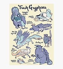 Trash Gryphons: Collection Photographic Print