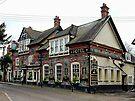 The Castle Inn Hotel Bramber by Dorothy Berry-Lound