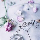 Still Life of Fading Rose by Tamsyn Morgans