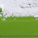 Fresh green  by PeterBusser
