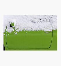 Fresh green  Photographic Print