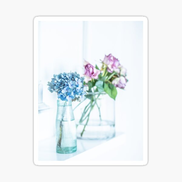 Blue Hydrangea and Pink Roses Sticker