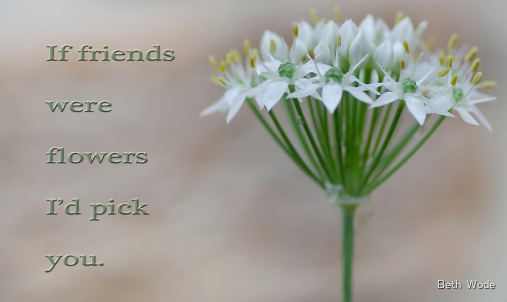 If Friends were Flowers - Cleveland Qld Australia by Beth  Wode