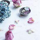 Pretty Petals by Tamsyn Morgans