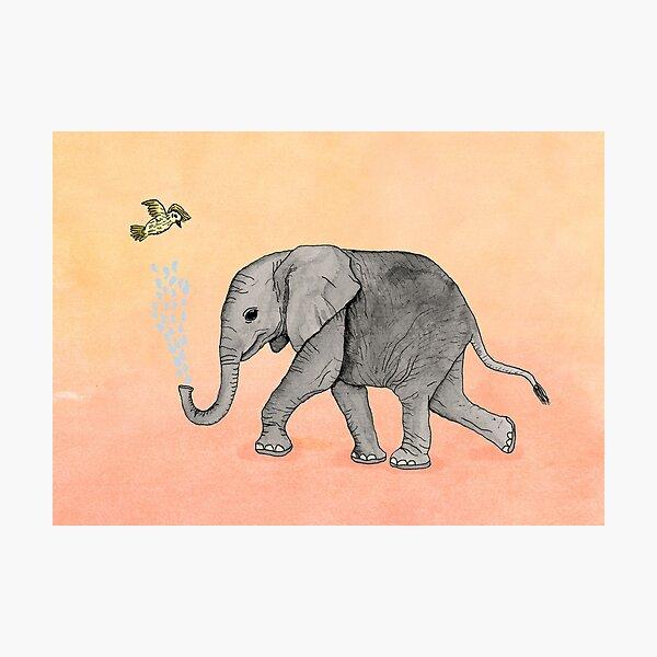 Elephant and the Bird Photographic Print