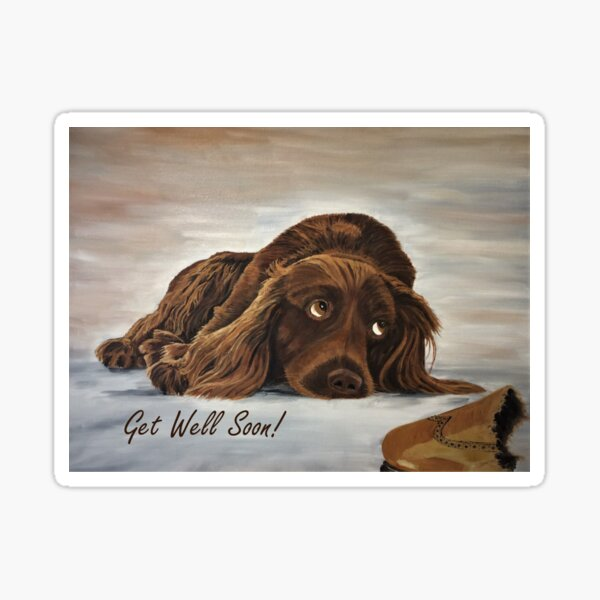 Naughty Spaniel - Get Well Soon Card Sticker