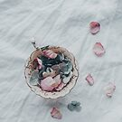 Teacup of Petals by Tamsyn Morgans