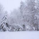 Snowy Yard by RodriguezArts