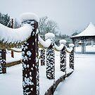 Band stehen im Schnee von Paul Barnett