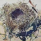Empty Nest by JennyArmitage