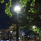 Melbourne Riverside At Night by lezvee