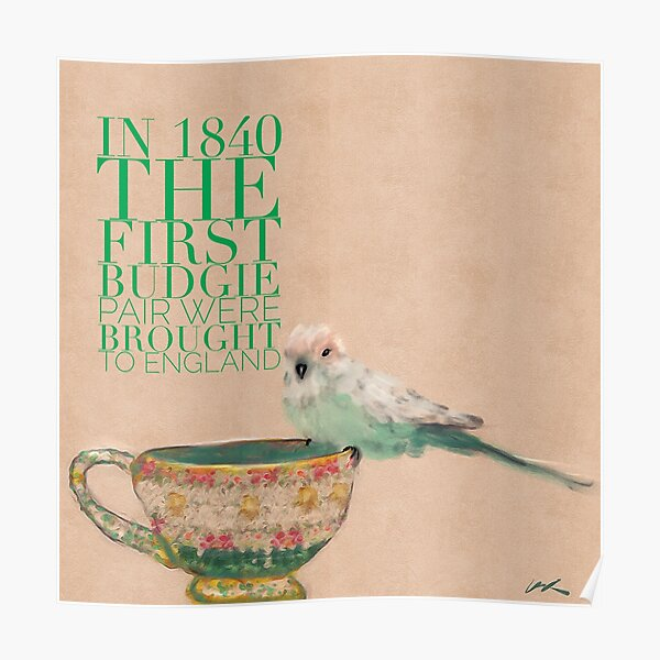 Baby Budgie (parkeet tiny and cute) on teacup animal facts green typography Poster
